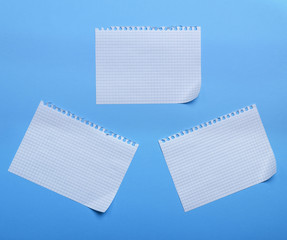 three blank sheet of paper with curved corners on a blue background, the sheets into the cell