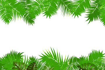 Web summer jungle frame banner. Green palm leaves template isolated white background. Vector abstract illustration. Realistic picture summer tropical Paradise mock up.