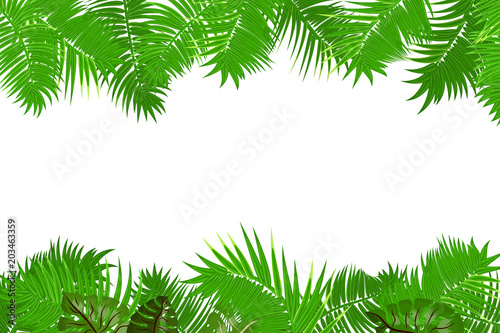 Web Summer Jungle Frame Banner Green Palm Leaves Template Isolated