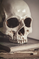 Still life with human skull and vintage book