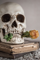 Still life with dry roses and skull on vintage book and lace
