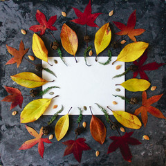 Empty white sheet of paper framed by autumn leaves in mandala shape flat lay on dark background