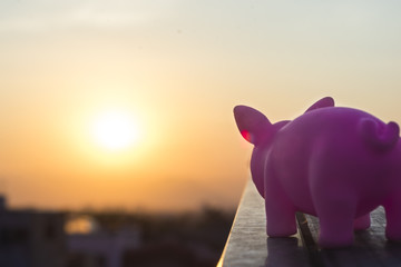 Rubber pigglet watching the dawn