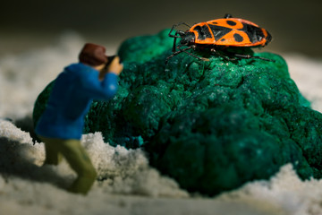 Miniature photographer taking picture of firebug