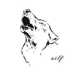 Hand drawn vector abstract artistic ink textured graphic sketch drawing illustration of wildlife wolf head isolated on white background