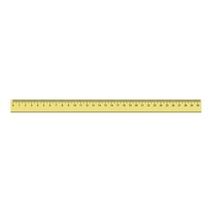 30 cm plastic ruler icon. Realistic illustration of 30 cm plastic ruler vector icon for web design isolated on white background