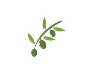Olive oil logo design template