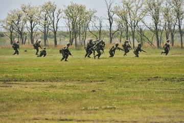 陸上自衛隊 水陸機動団
