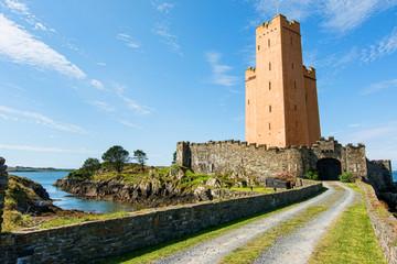 Landscapes of Ireland. Kilcoe Castle