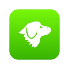 Retriever dog icon digital green for any design isolated on white vector illustration