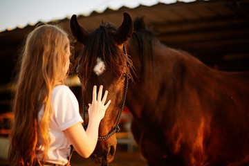 little girl with horse on sunny day