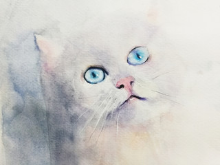 watercolor hand drawn cat looking forward