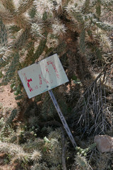 Old exit sign in cholla cactus