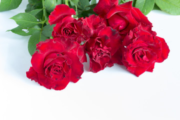 Red roses and heart shape ornaments on white background