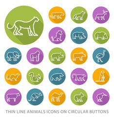 Set of Elegant Universal White Animals Minimalistic Thin Line Icons on Circular Colored Buttons on White Background