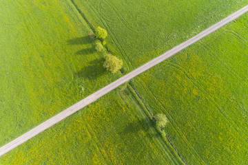 Luftbild mit Blick auf Wiesen im Frühling
