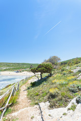 Lido Cala Lunga, Apulia - Beautiful landscape around the beach of Cala Lunga