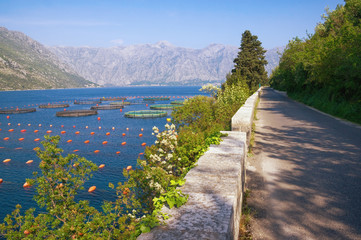 Beautiful landscape with fish farm. Montenegro, Bay of Kotor (Adriatic Sea)