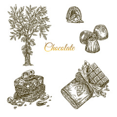 Set of chocolate. Cocoa tree, bonbons, stack and packing chocolate bar. Engraving style. Vector illustration.