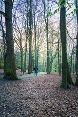 Young adult backpacker through woodland ,Gothenburg, Sweden