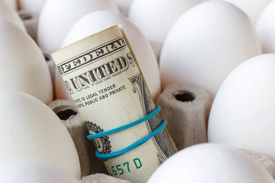 American dollars rolled into a tube on the background of white chicken eggs closeup