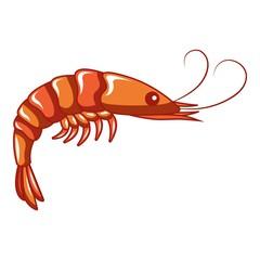 Shrimp icon. Cartoon of shrimp vector icon for web design isolated on white background