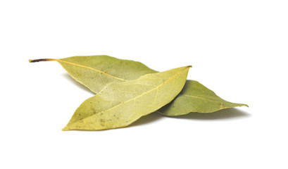 Bay Leaves on a White Background