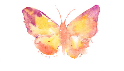 Butterfly on white, watercolor illustrator, hand painted