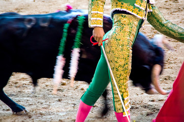 Bullfighter in green giving a pass to the bull with his cape