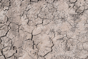 drought, the earth cracked due to drought, dry grass on the ground