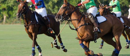 Horse running in polo tournament.