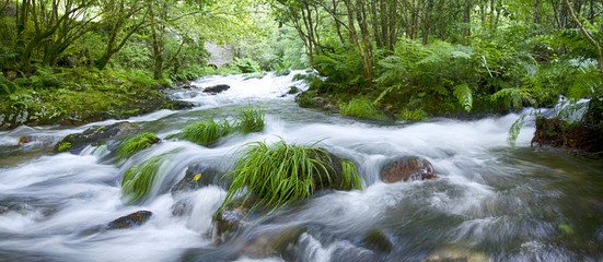 Tuinposter Rivier Mountain river in Galicia, Spain