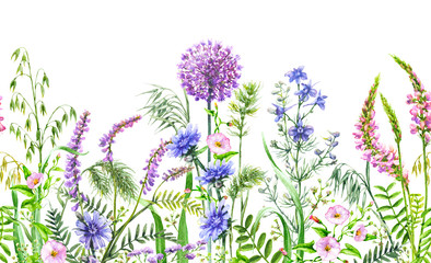Wild Flowers  Seamless Horizontal Border