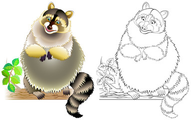 Colorful and black and white pattern for coloring. Illustration of cute raccoon. Worksheet for children and adults. Vector image.