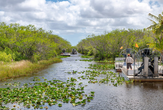 Airboats tours in Everglades National Park, Florida
