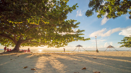 Tourists under a large deciduous tree of life with red-green leaves. The rays of the morning sun through the leaves of a tree on the exotic Anda beach. Bohol. Philippines. Shooting in motion.