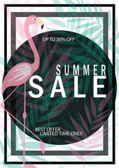 summer sale with flamingo