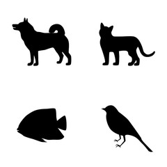 Set silhouette of dog, cat, fish, bird icons elements, vector illustration
