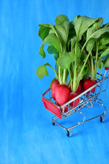 Fresh radish in a trolley against blue background. Copy space