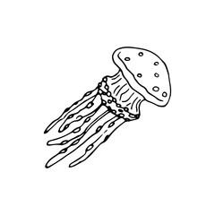 Handdrawn doodle jellyfish icon. Hand drawn black sketch. Sign symbol. Decoration element. White background. Isolated. Flat design. Vector illustration
