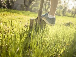 gardening concept; shovel in the garden on a sunhine in the grass