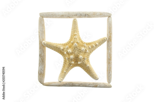 summer sea frame. Driftwood frame with dry starfish. frame of white ...