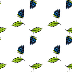 Blackberry seamless pattern background.