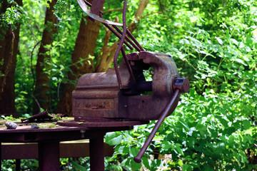 Verrosteter Schraubstock im Garten