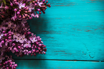 spring lilac on a wooden, turquoise background.
