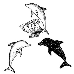 Dolphins, black and white pattern, vector illustration