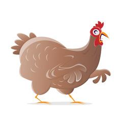 funny cartoon chicken
