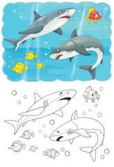 Sea animals. Ocean. Sharks. Illustration for children. Coloring page.  Cute and funny cartoon characters