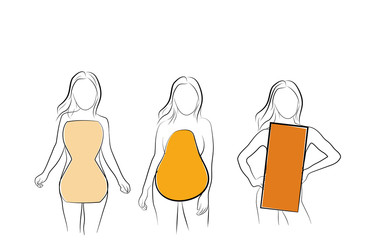 types of figures of women. vector illustration.