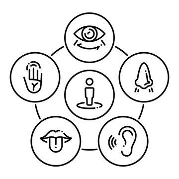 Set of black icons isolated on white background, on theme Sense organs